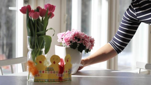 kodin_kukkia